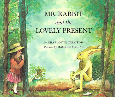 MR RABBIT AND THE LOVELY PRESENT  PB