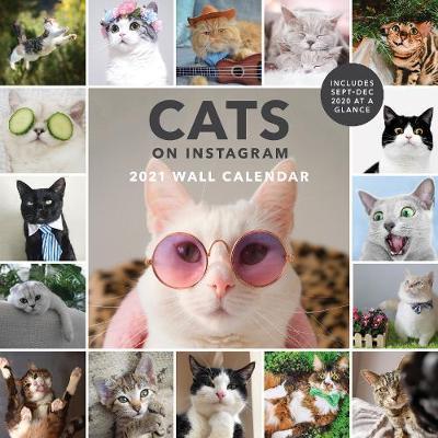 CATS ON INSTAGRAM - 2021 WALL CALENDAR
