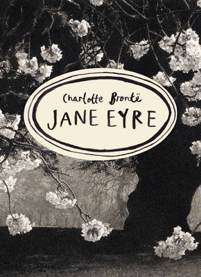 VINTAGE CLASSICS BRONTE SERIES : JANE EYRE PB