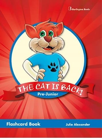 THE CAT IS BACK PRE-JUNIOR FLASHCARDS